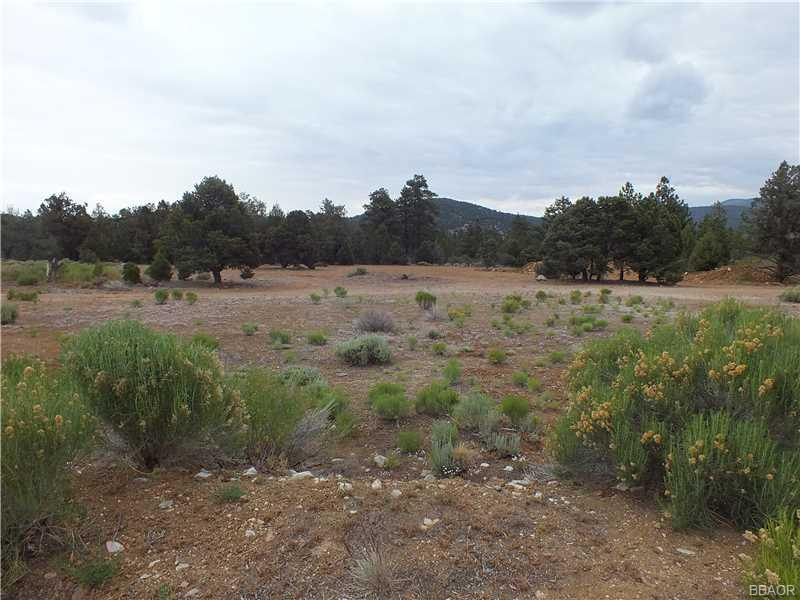 0 Pine Lane, Big Bear City, CA 92314 - Big Bear City, CA real estate listing