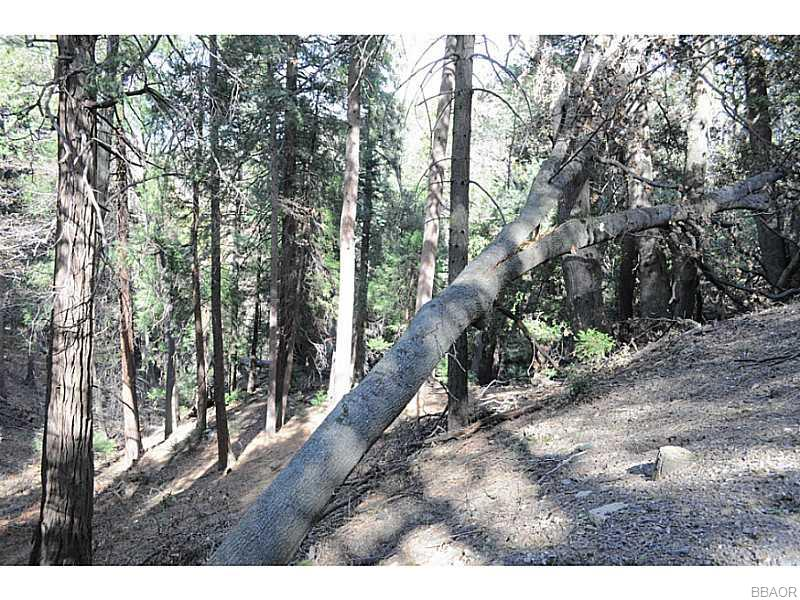 0 Mojave River Property Photo