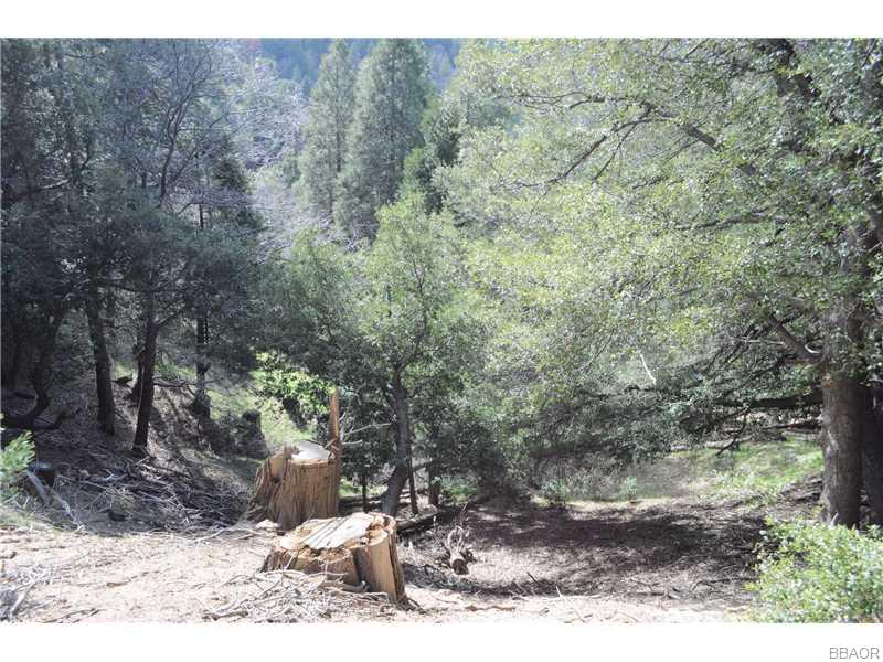 0 Mojave River Rd Property Photo - Cedarpines Park, CA real estate listing