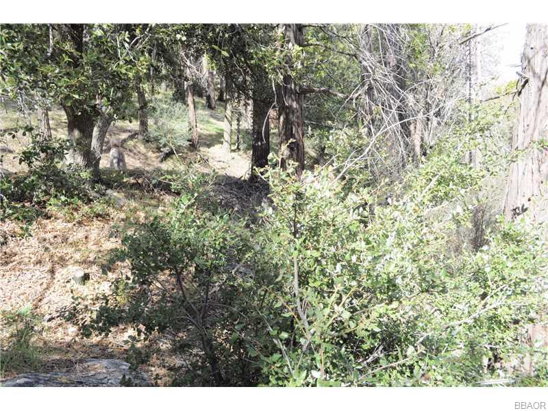 0 Mojave River Rd Property Photo 1
