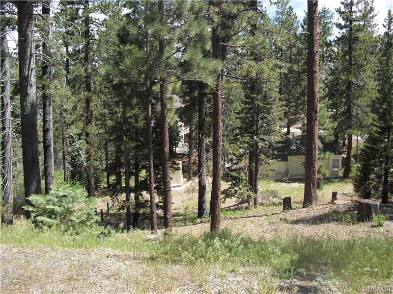 0 Canyon, Fawnskin, CA 92333 - Fawnskin, CA real estate listing
