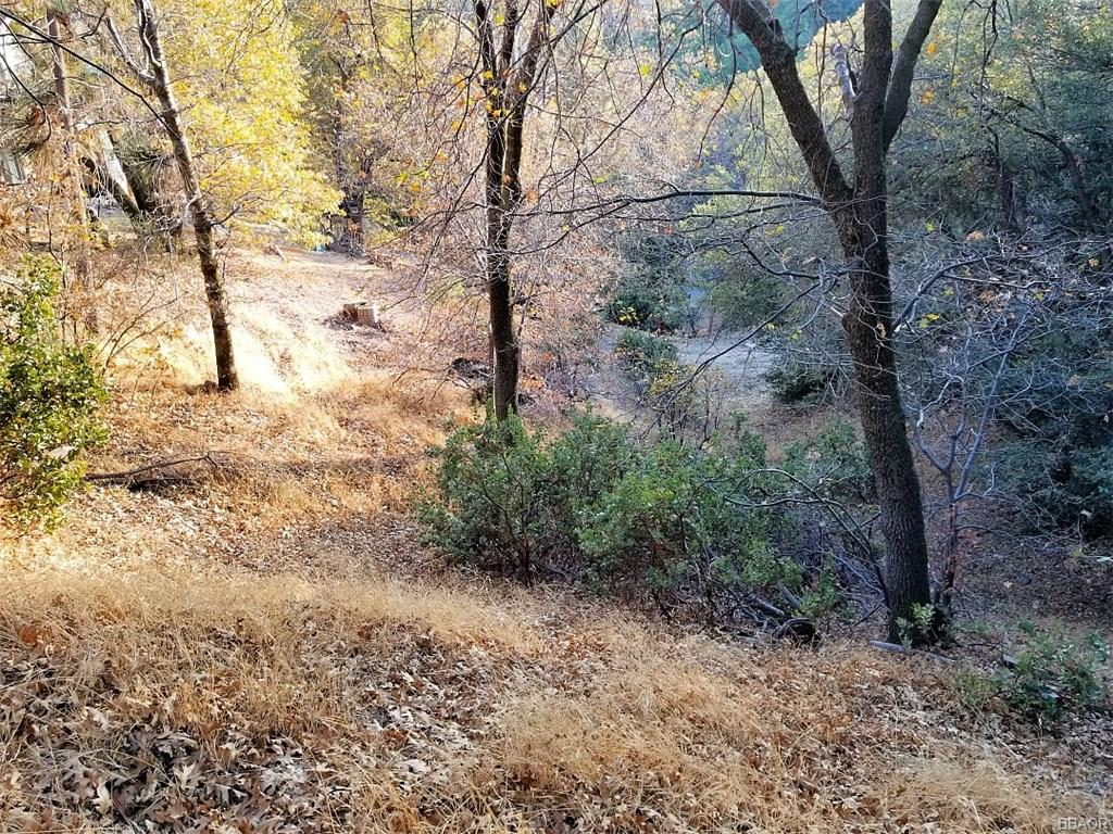 0 Hillside Spur Property Photo - Cedar Glen, CA real estate listing