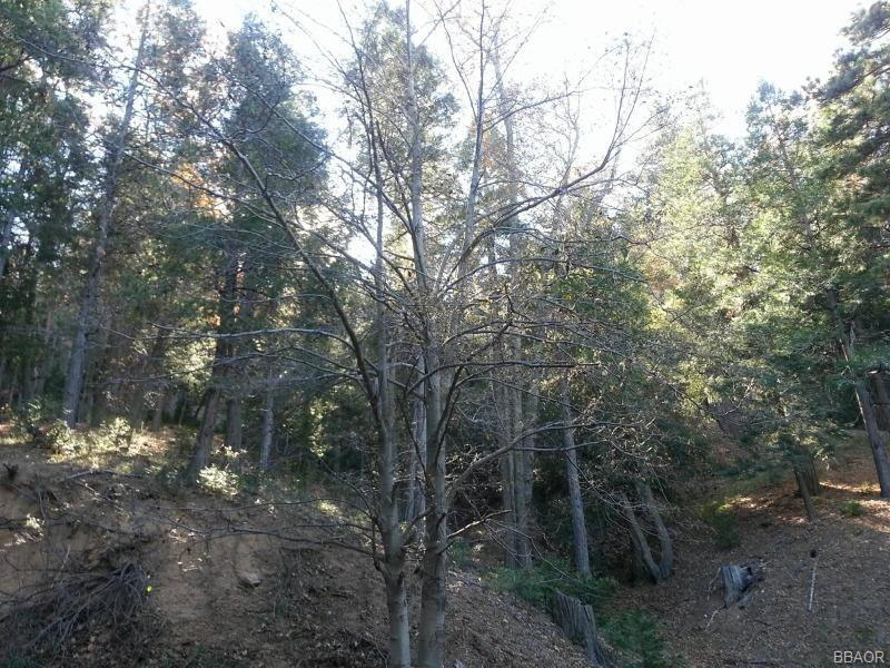 0 Torrey Road Property Photo - Cedar Glen, CA real estate listing