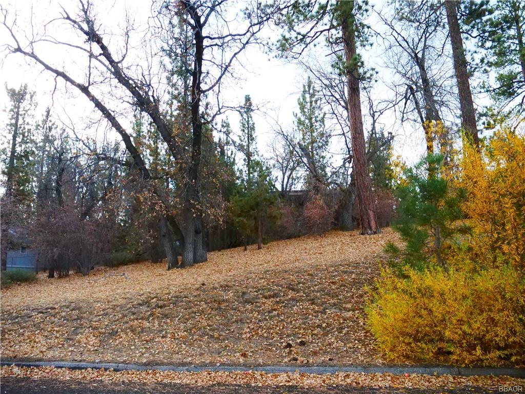 0 Alpenweg Drive Property Photo