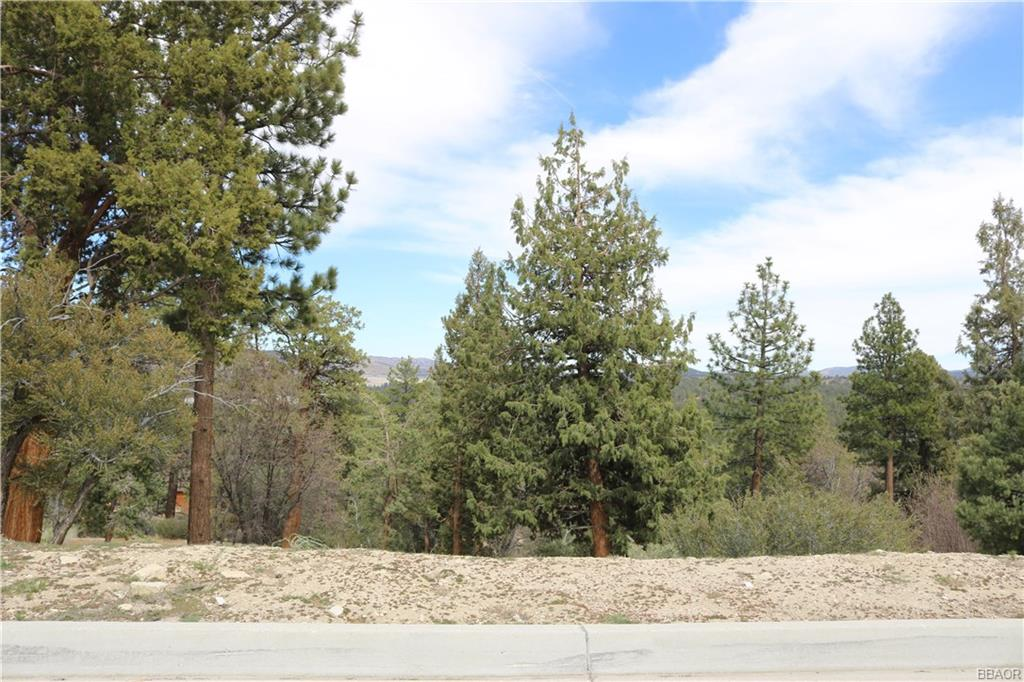 370 Starlight Circle Property Photo - Big Bear Lake, CA real estate listing