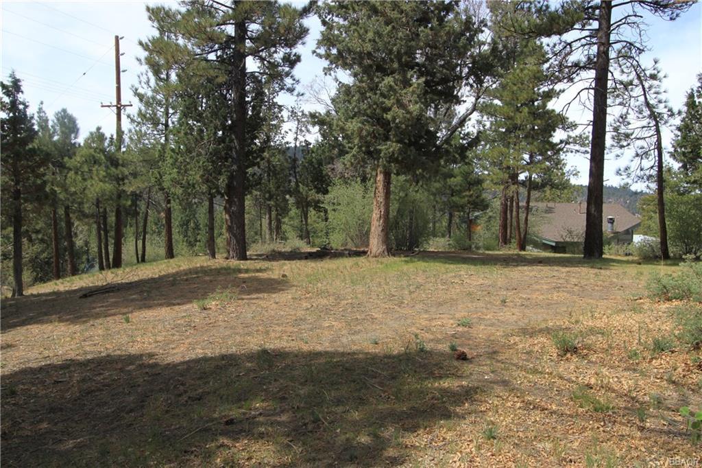 42860 Cougar Road Property Photo
