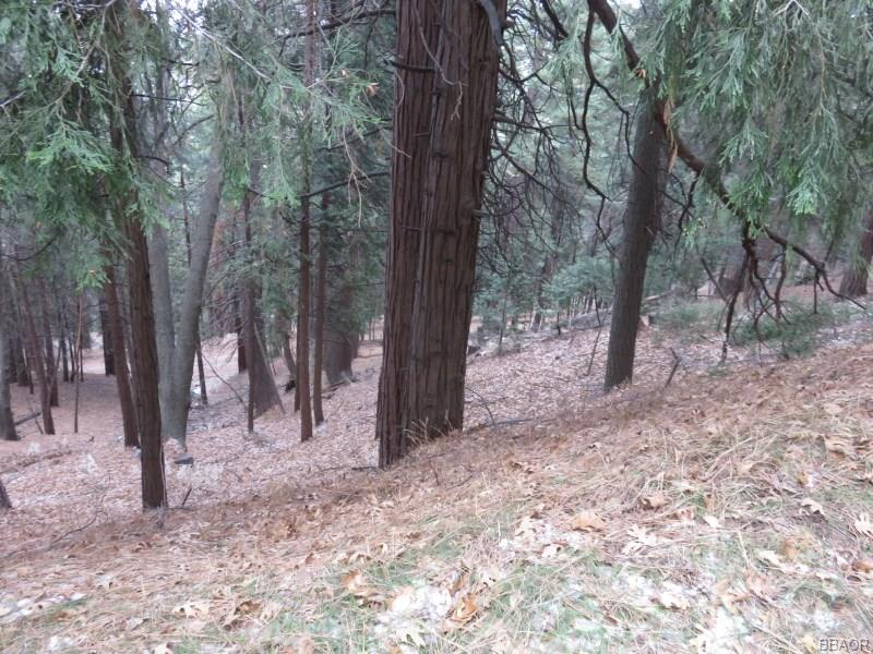 0 Mozumdar Road Property Photo - Cedarpines Park, CA real estate listing