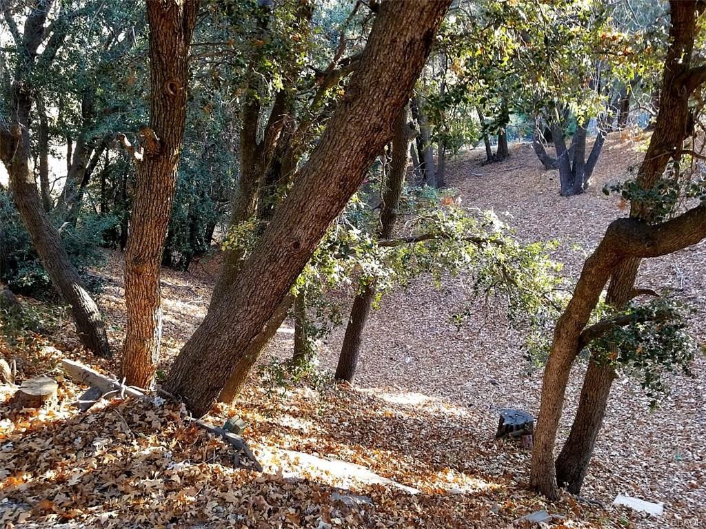 0 Hillside Spur Property Photo 1