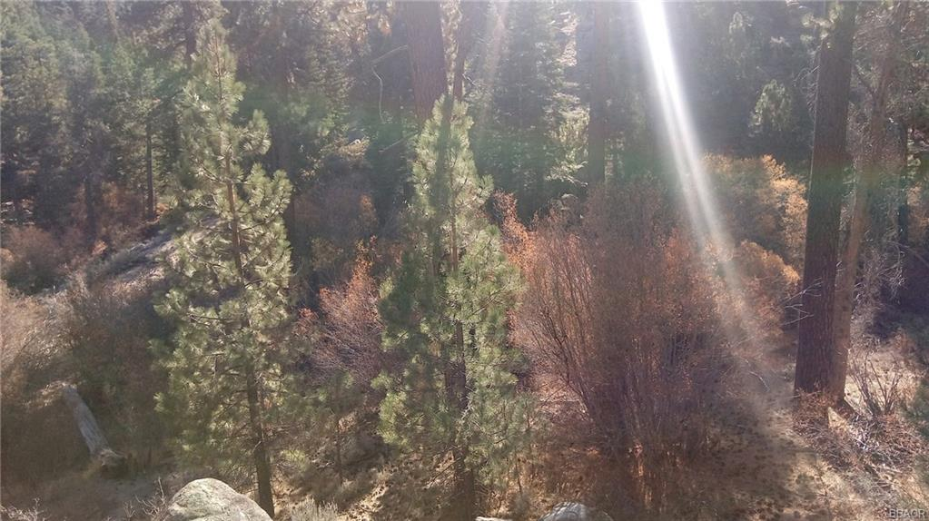 0 Boulder Creek Ln Property Photo