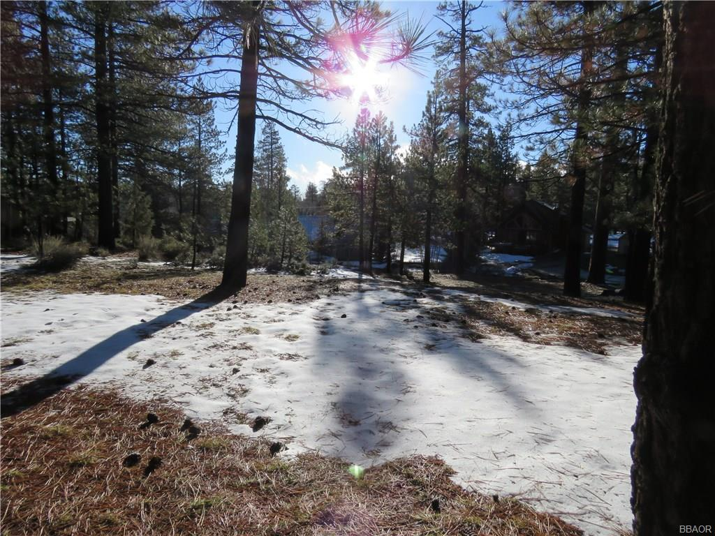 39761 Lakeview Property Photo - Big Bear Lake, CA real estate listing