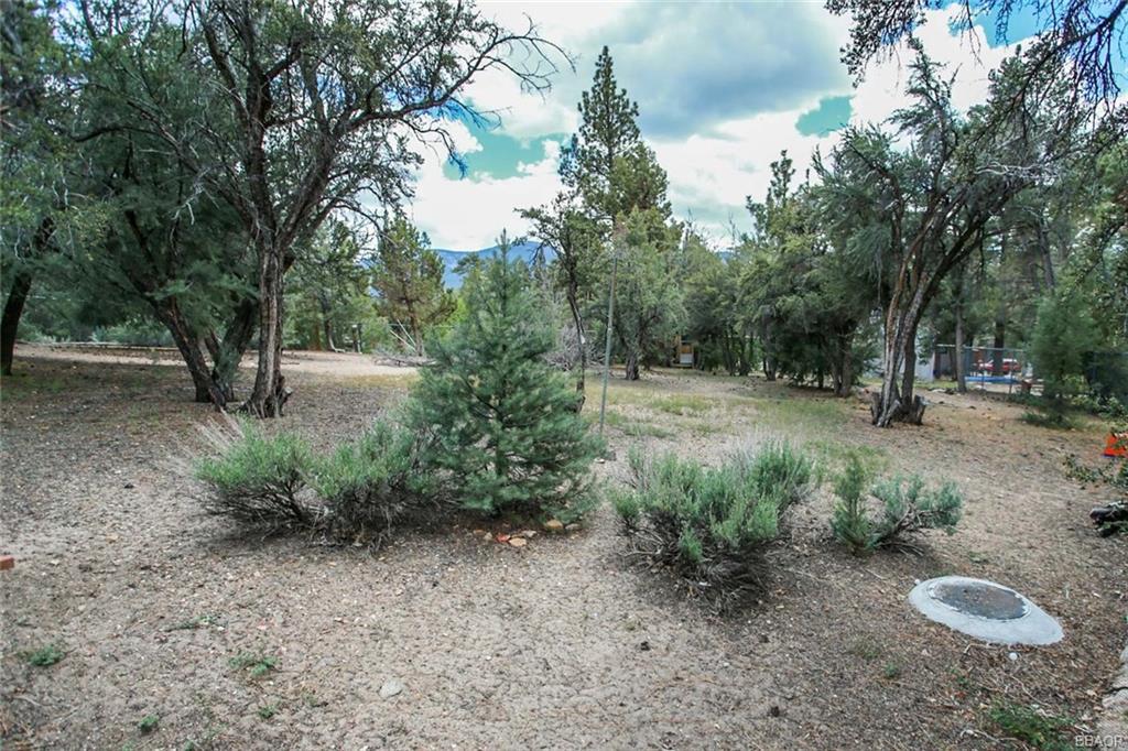 0 Cedar Mountain Property Photo
