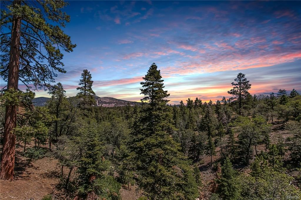 1518 Klamath Road, Big Bear City, CA 92314 - Big Bear City, CA real estate listing