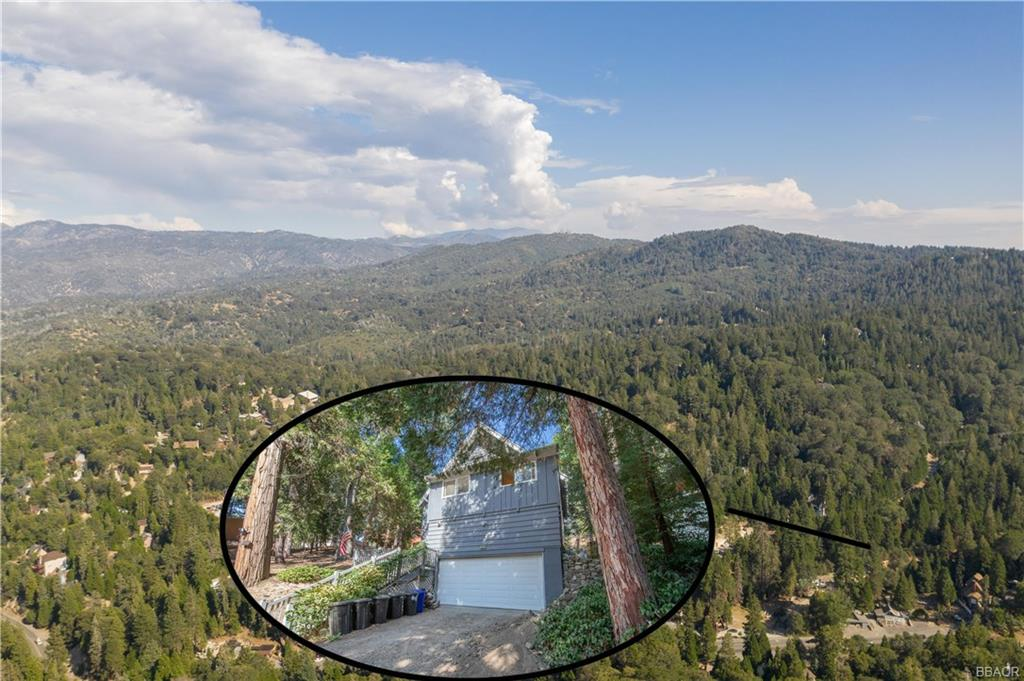 29069 Cedar Terrace Property Photo - Cedar Glen, CA real estate listing