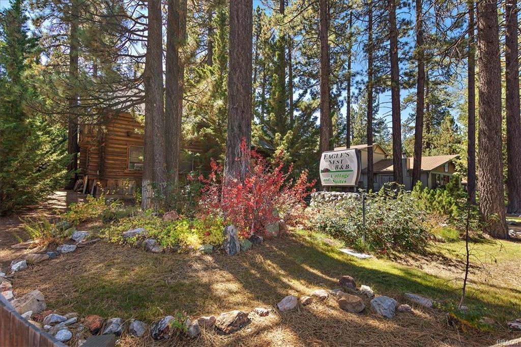 41675 Big Bear Boulevard, Big Bear Lake, CA 92315 - Big Bear Lake, CA real estate listing