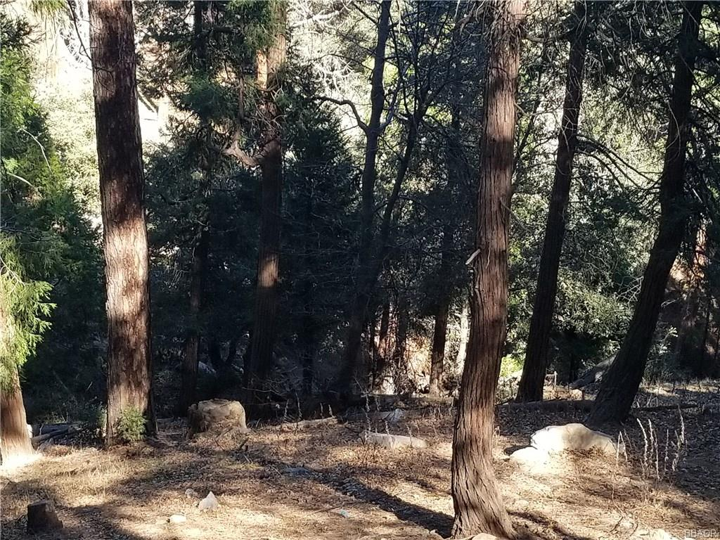 0 Deer Run Road Property Photo - Cedarpines Park, CA real estate listing