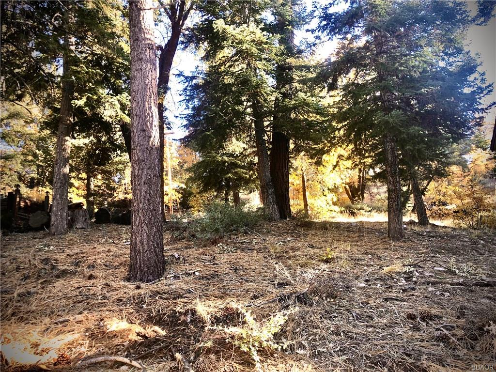 0 Raccoon, Fawnskin, CA 92333 - Fawnskin, CA real estate listing