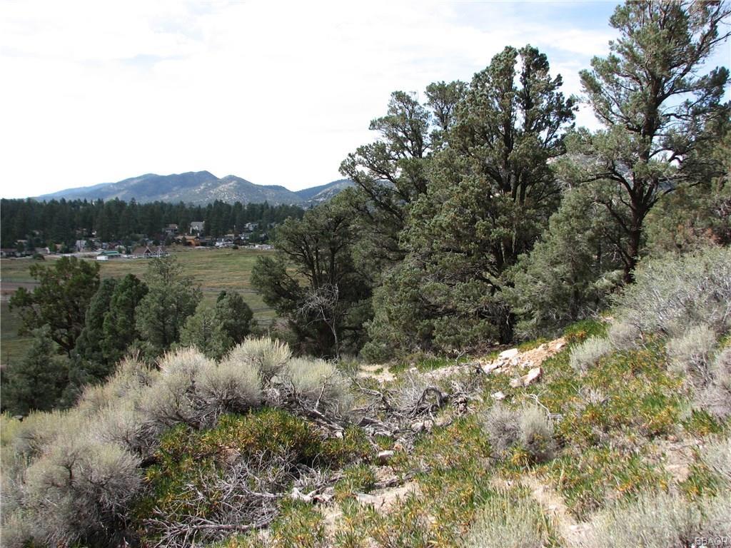 368 Cavern Drive, Big Bear City, CA 92314 - Big Bear City, CA real estate listing