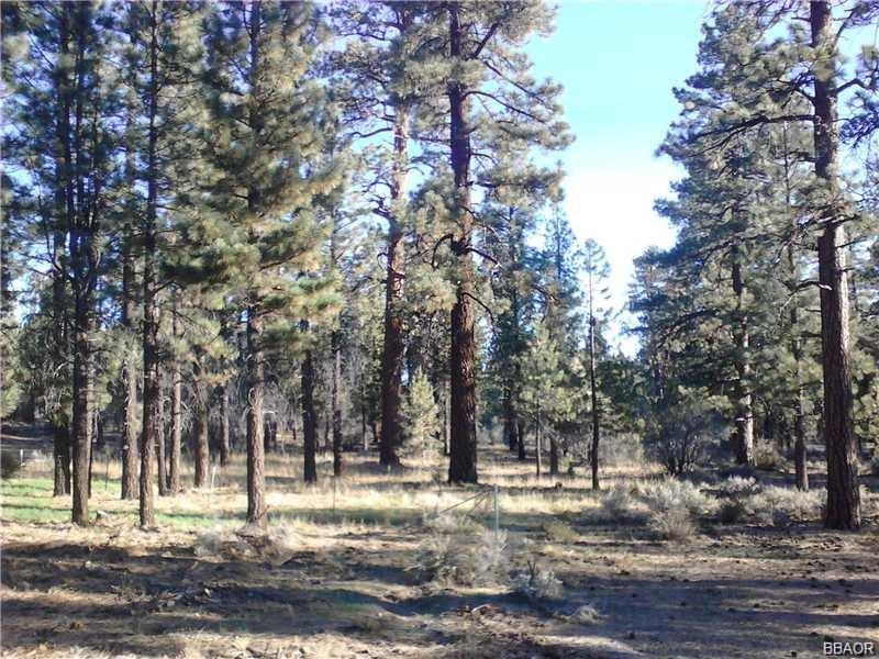 0 Erwin Ranch Road Property Photo - Big Bear City, CA real estate listing