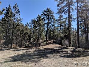 557 Division Drive, Big Bear City, CA 92314 - Big Bear City, CA real estate listing