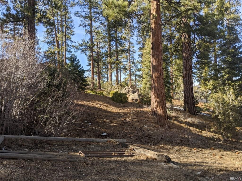 748 Paine Road, Big Bear Lake, CA 92315 - Big Bear Lake, CA real estate listing