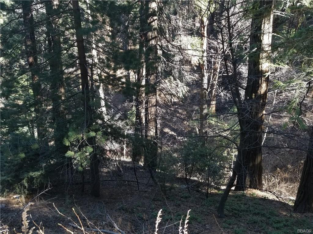 0 Burnt Mill Canyon Rd Property Photo - Cedarpines Park, CA real estate listing