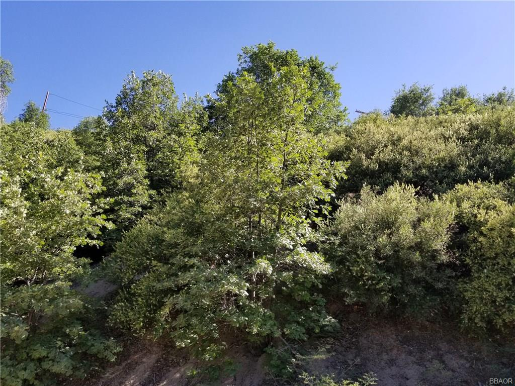 0 Elder Drive Property Photo - Cedar Glen, CA real estate listing