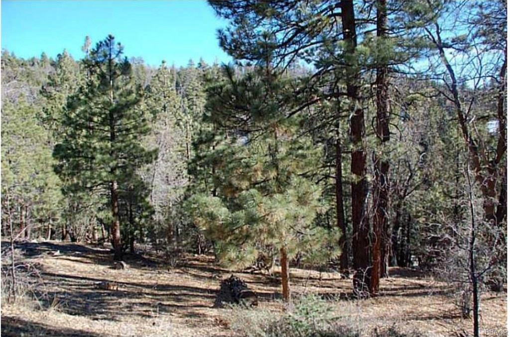 1275 Fawnskin Drive Property Photo - Fawnskin, CA real estate listing