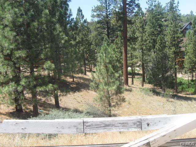 42048 Division Drive, Big Bear City, CA 92314 - Big Bear City, CA real estate listing