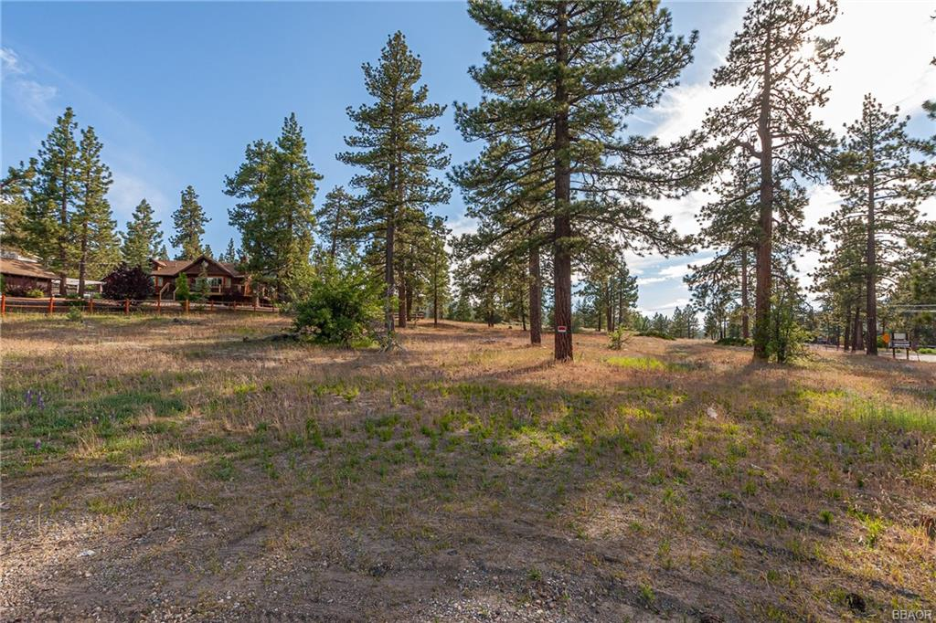 0 Big Bear Boulevard Property Photo - Big Bear Lake, CA real estate listing