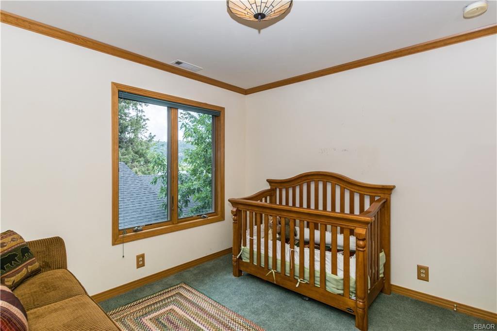39583 Lake Drive Property Photo 30