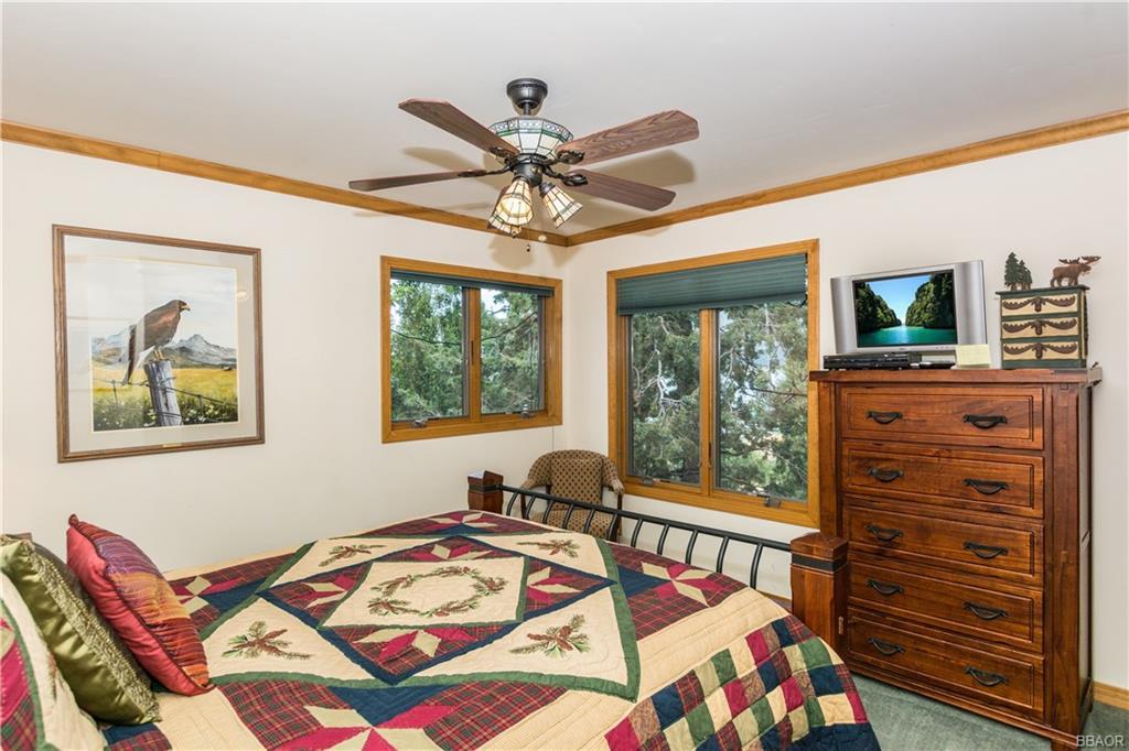 39583 Lake Drive Property Photo 33