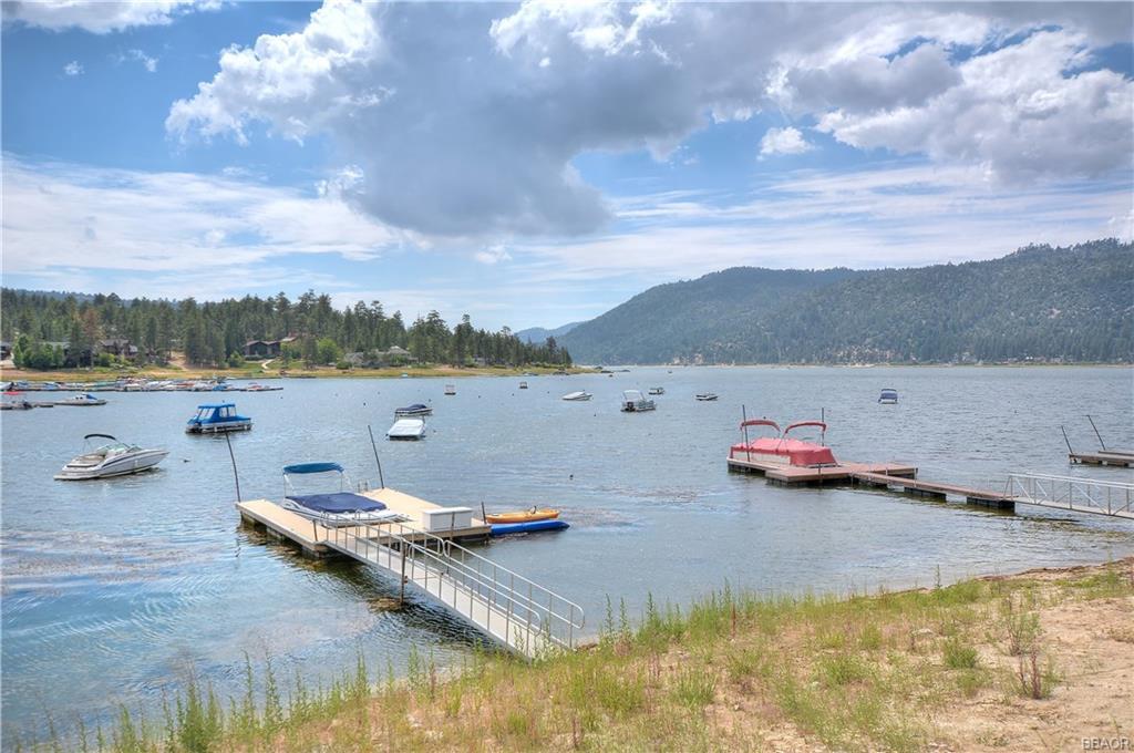39583 Lake Drive Property Photo 46