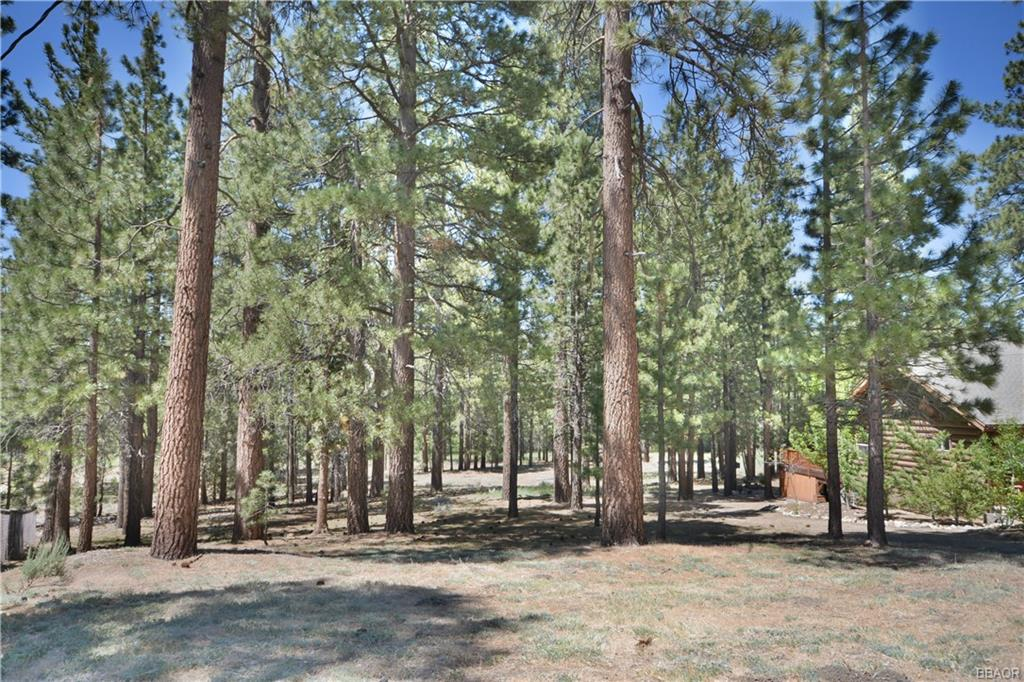 41534 Swan Drive Property Photo - Big Bear Lake, CA real estate listing