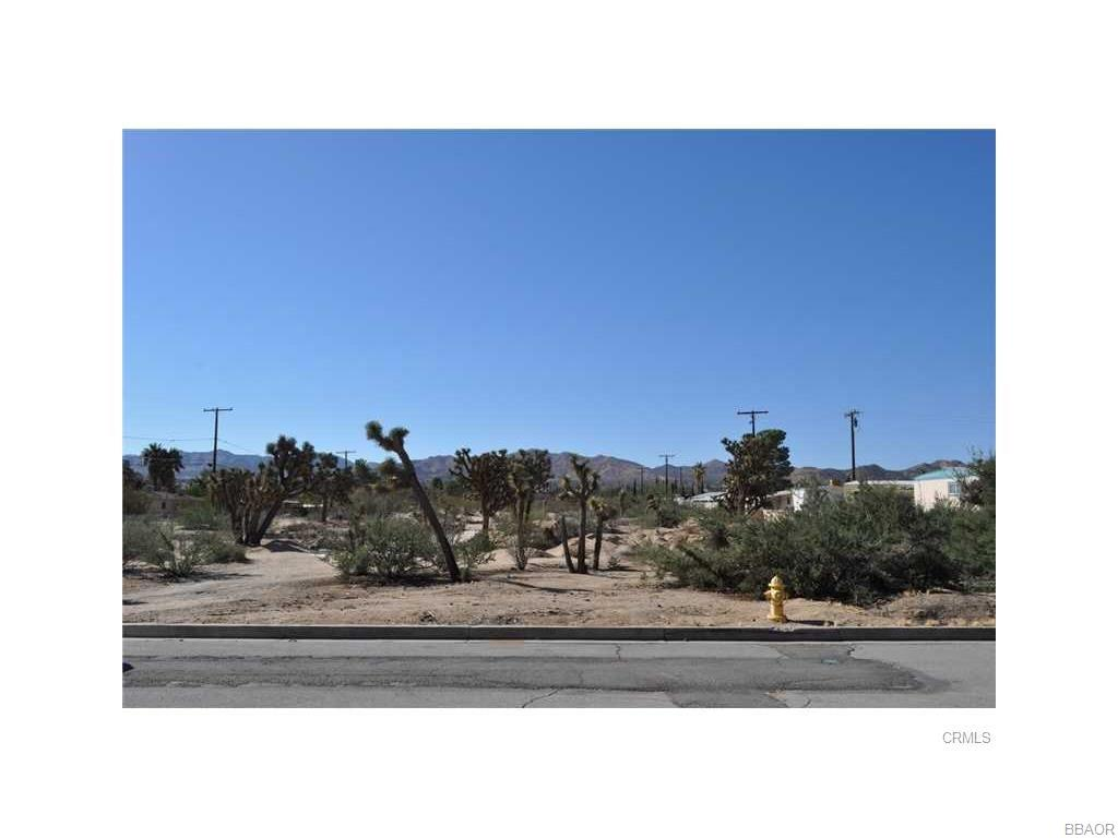 56290 A Coyote Trail Property Photo - Yucca Valley, CA real estate listing