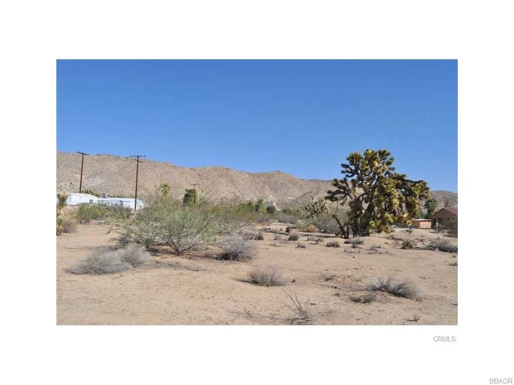 56290 C Coyote Trail Property Photo - Yucca Valley, CA real estate listing