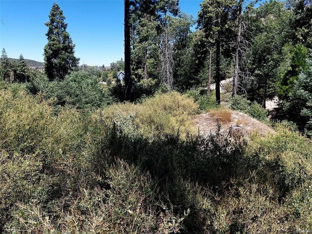 0 Bridge Road Property Photo - Cedar Glen, CA real estate listing