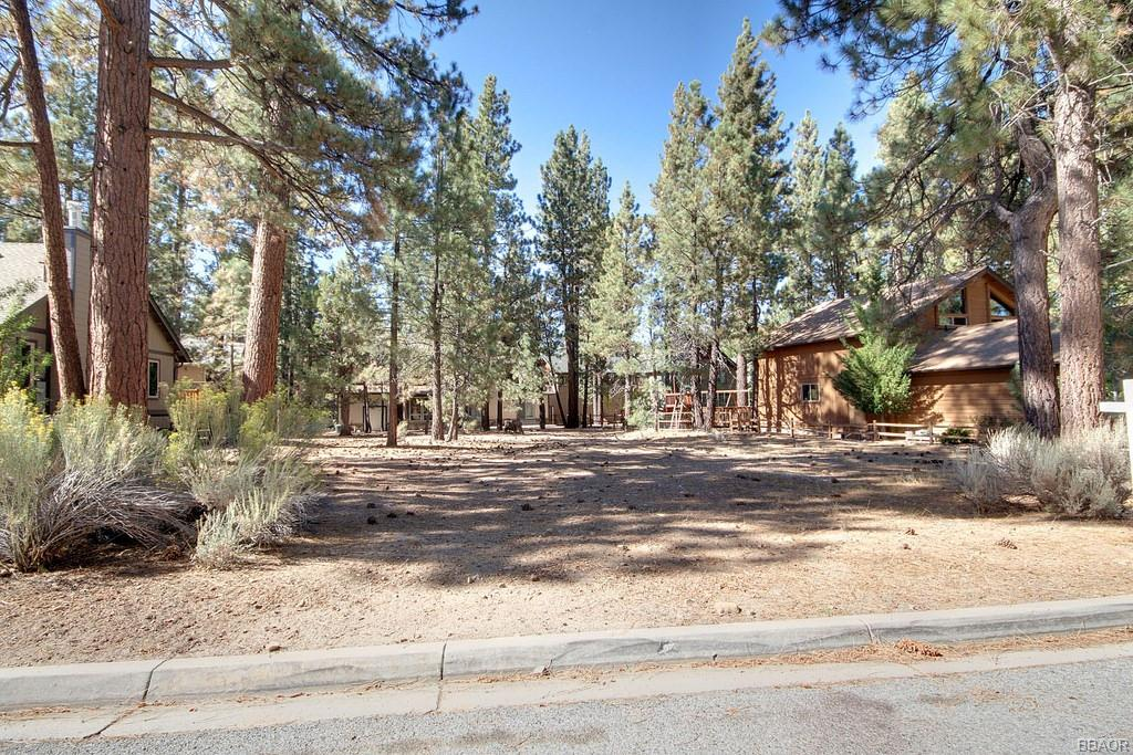 114 Meadow View Drive Property Photo - Big Bear Lake, CA real estate listing