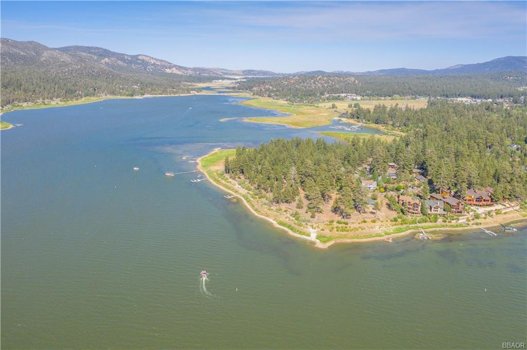 255 N Eureka Drive Property Photo - Big Bear Lake, CA real estate listing