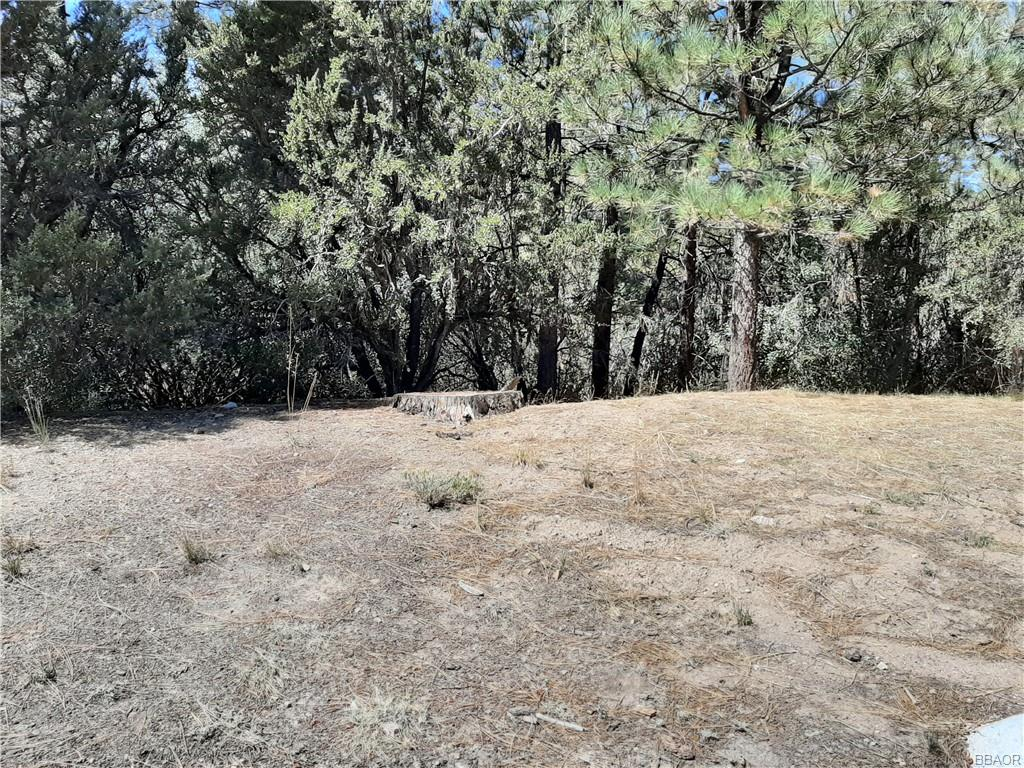 0 S Division Property Photo 1