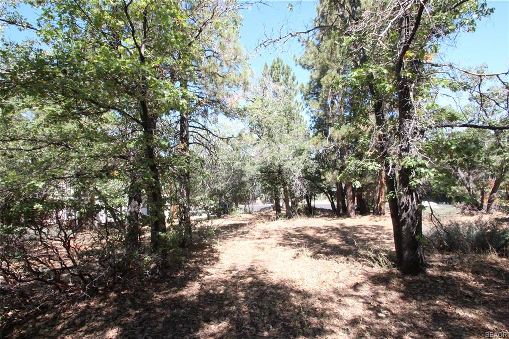 1401 Klamath Road Property Photo