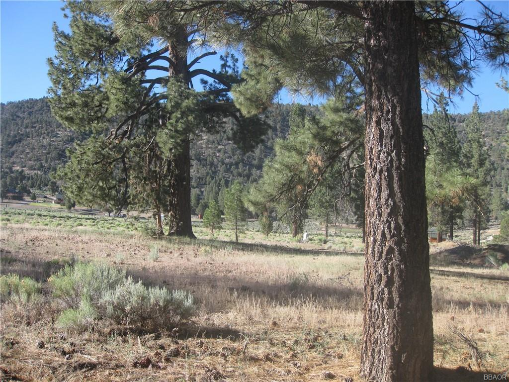 2824 Erwin Ranch Road Property Photo