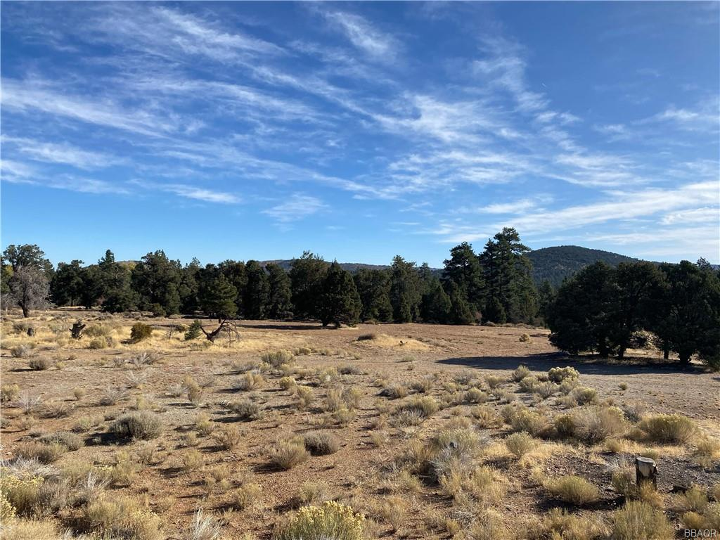 0 Pine Lane Property Photo - Big Bear City, CA real estate listing