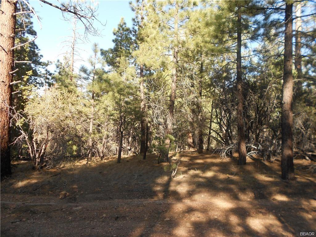 0 Holcomb Valley Road Property Photo