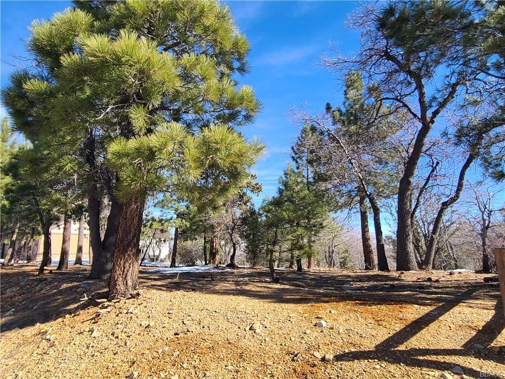 1582 Angels Camp Property Photo