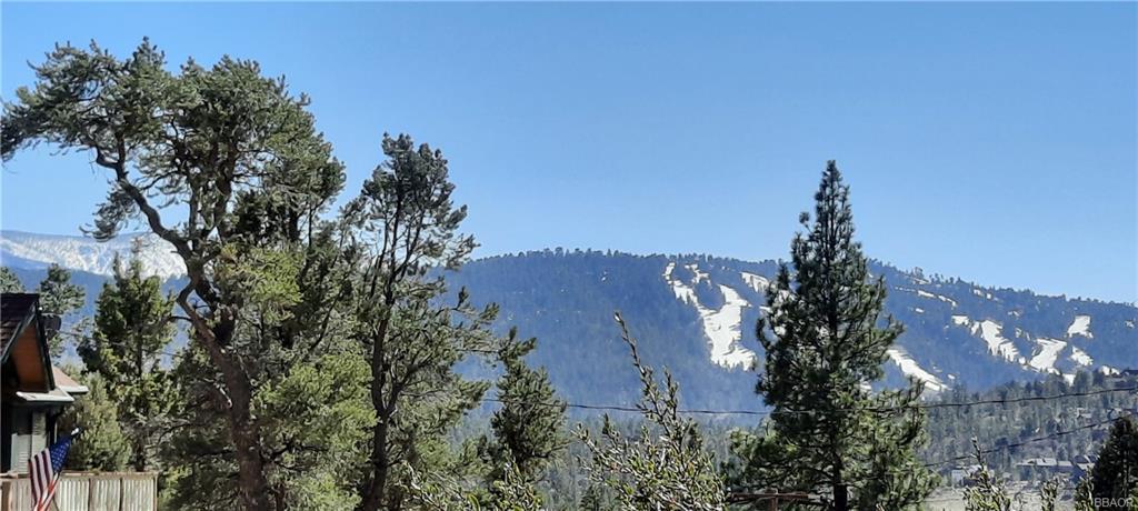 1084 Cedar Mtn Mountain Property Photo 1