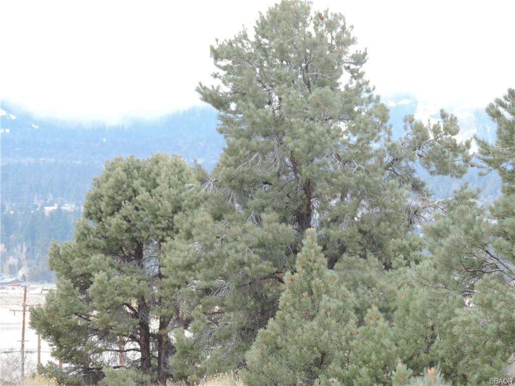 0 Camino Bosque Property Photo