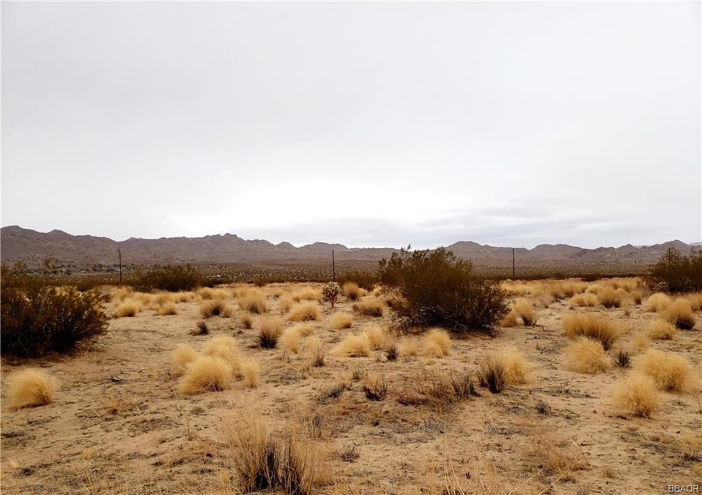 0 Two Mile Road Property Photo - Joshua Tree, CA real estate listing