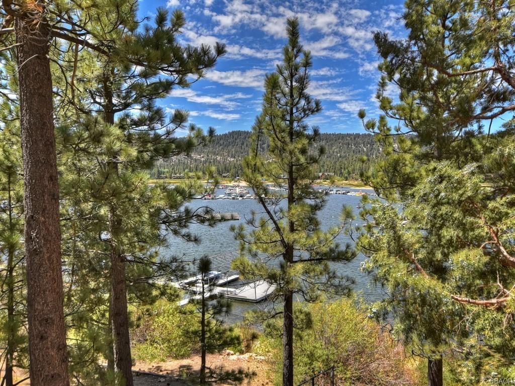 39513 Lake Drive Property Photo 41