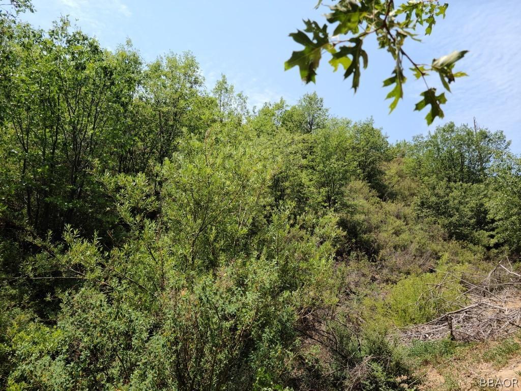 0 Hill Drive Property Photo