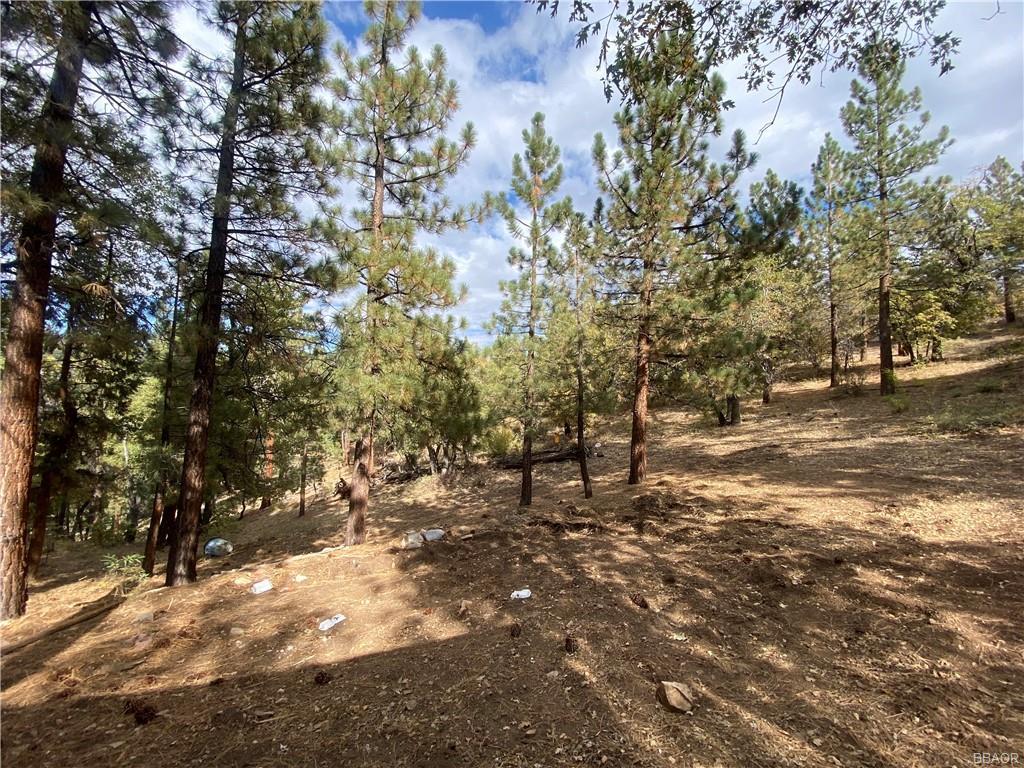 43628 Ridge Crest Drive Property Photo 8
